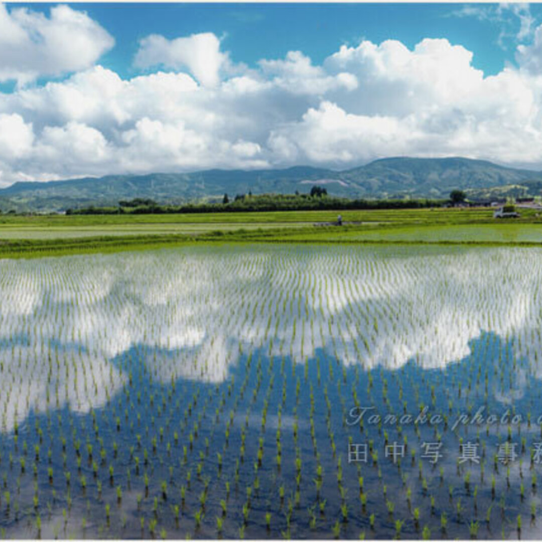 雲の映り込んだ水鏡の田 LP0507