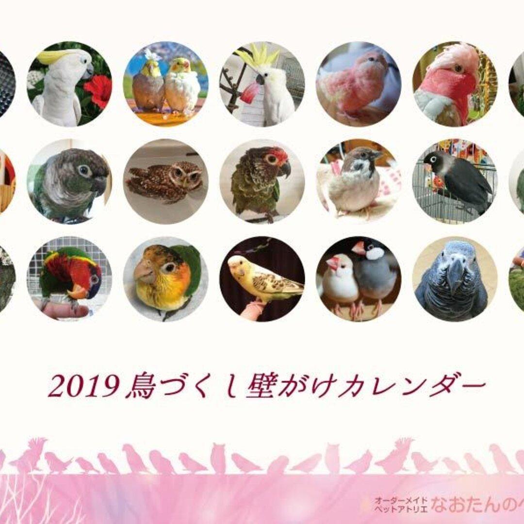 2019年 鳥づくし壁掛けカレンダー