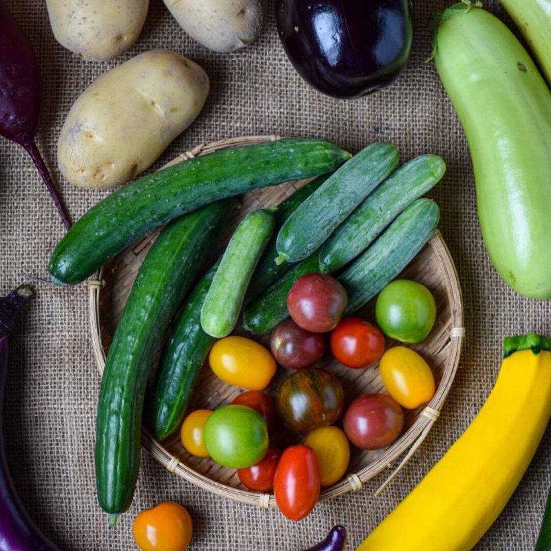 多品目栽培農家の、個性豊かな野菜つめあわせMセット