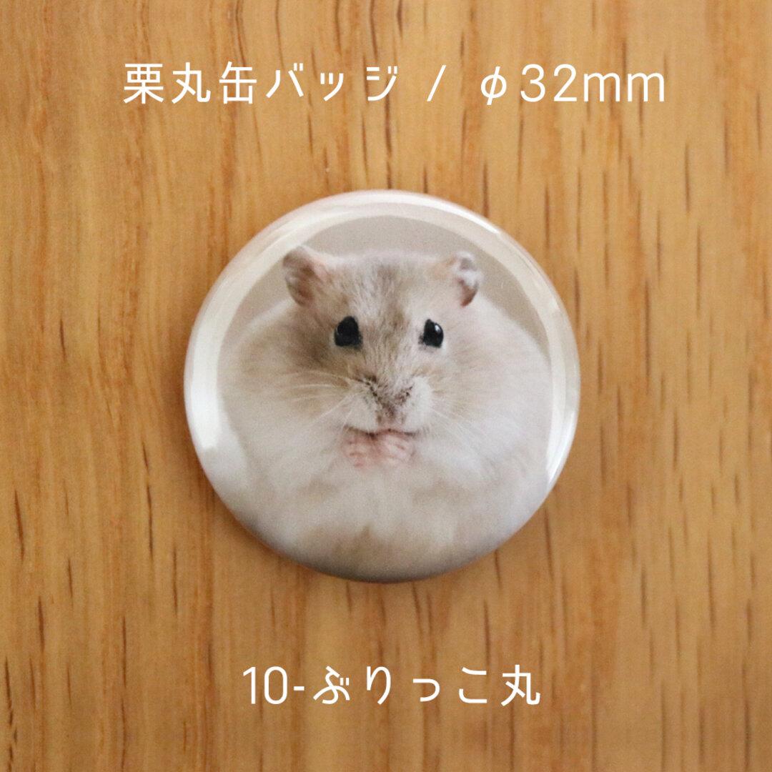 栗丸缶バッジ(32mmタイプ)【10-ぶりっこ丸】
