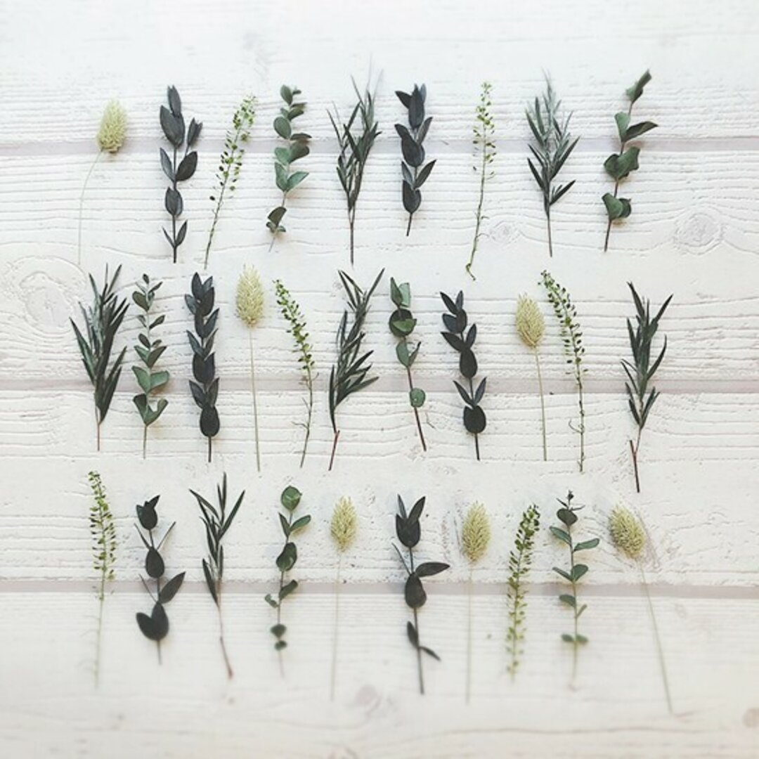 30本 ドライ&プリザーブドフラワー 茎付き アソート 結婚式 席札 メニュー ウェディング bouquet016