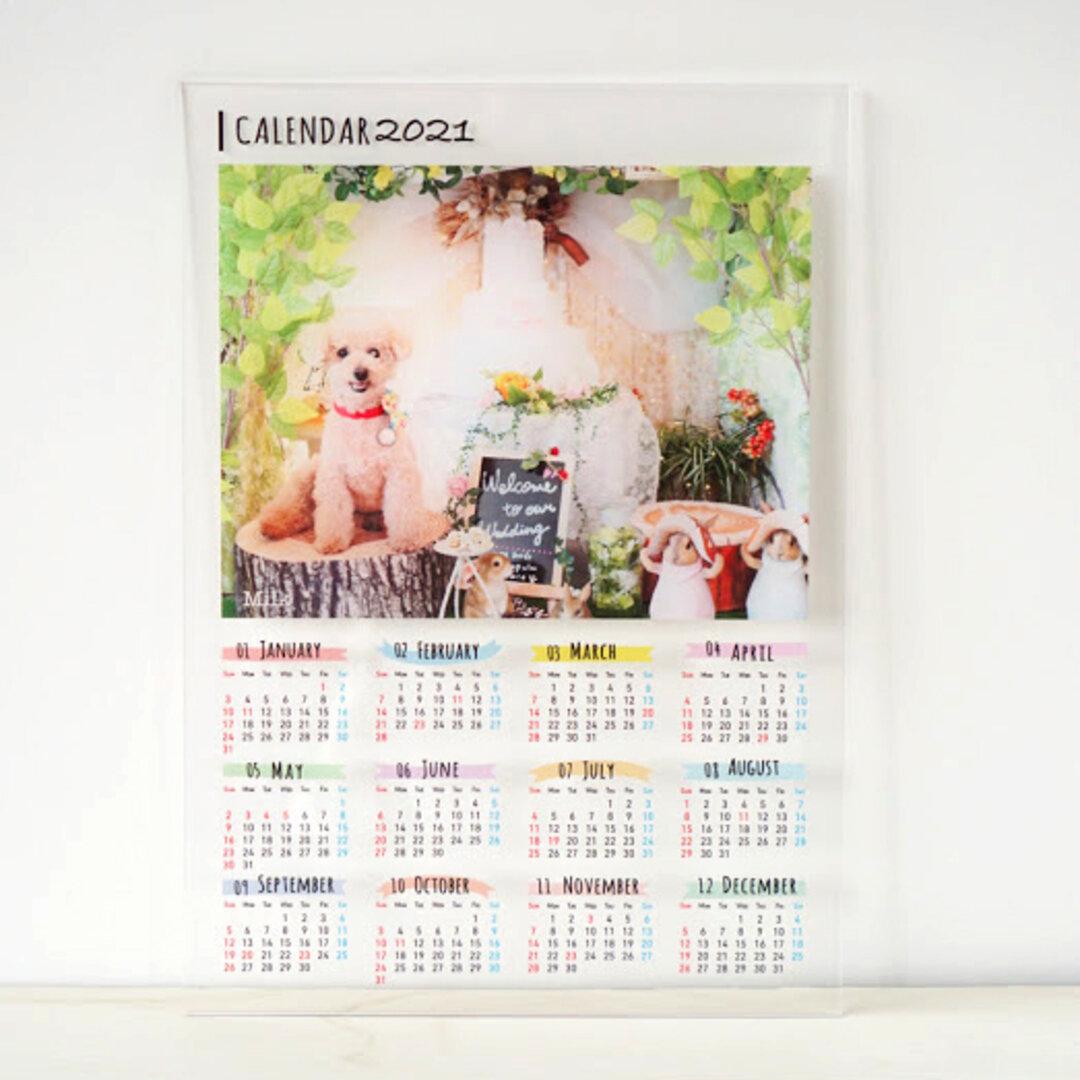 うちの子 アクリルフォトカレンダー │猫 犬 うさぎ  ペット/OK