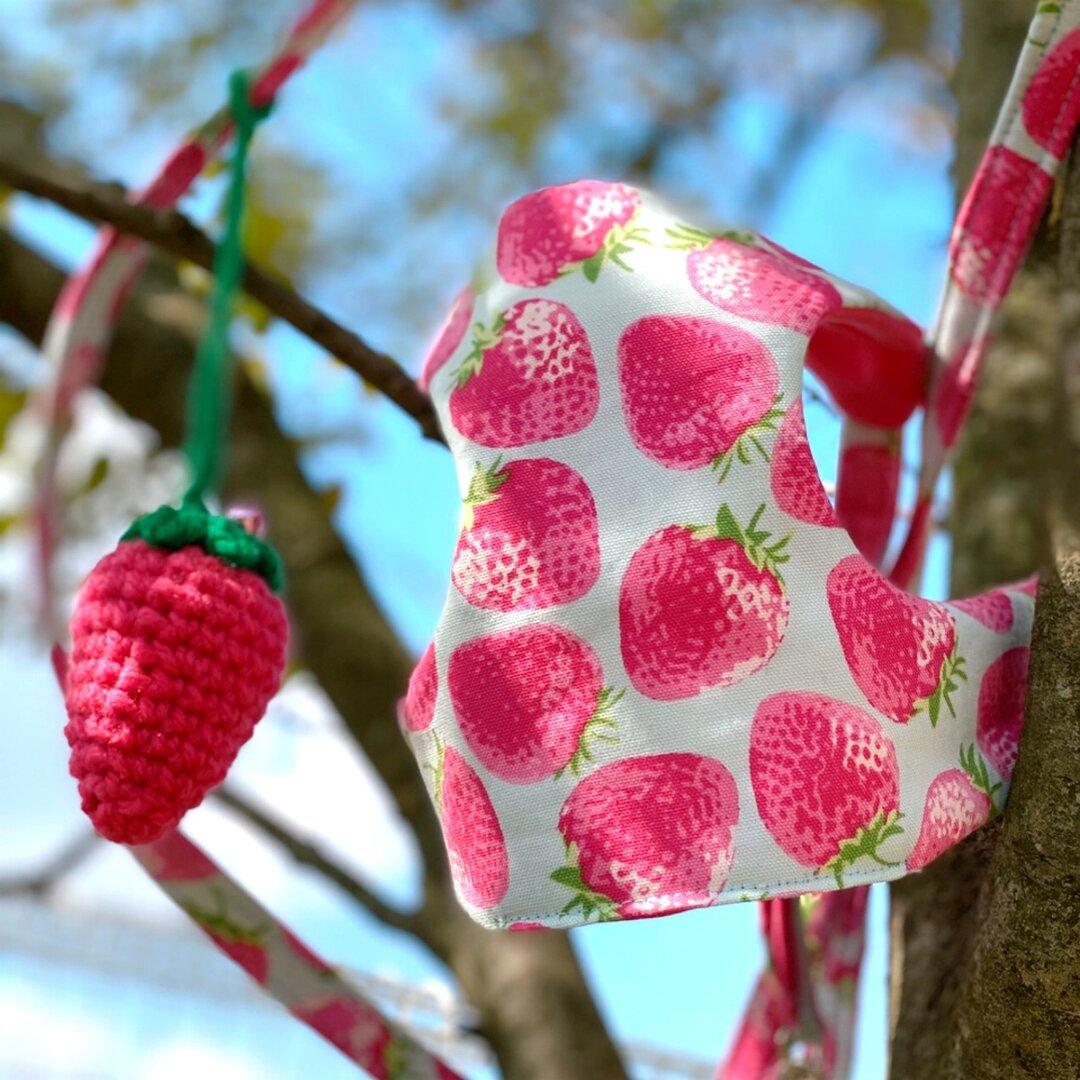 ピンク苺のハーネス・リード 苺のニットボンボン付き