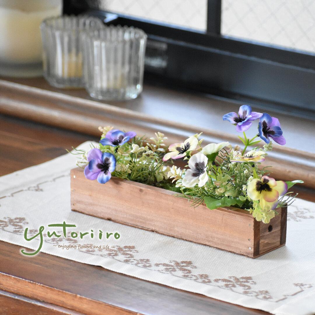 春の花壇 パンジー