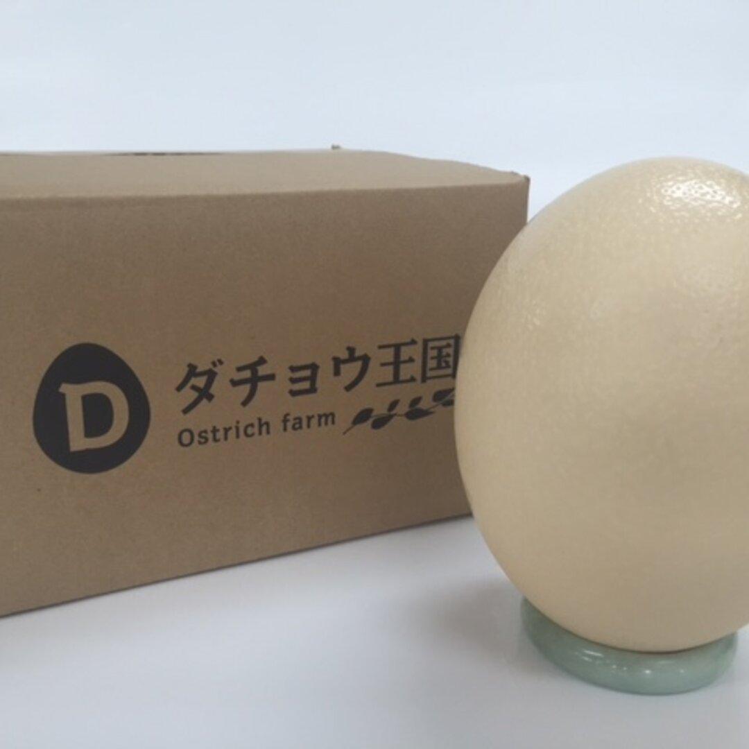 ダチョウの卵殻 エッグアート素材