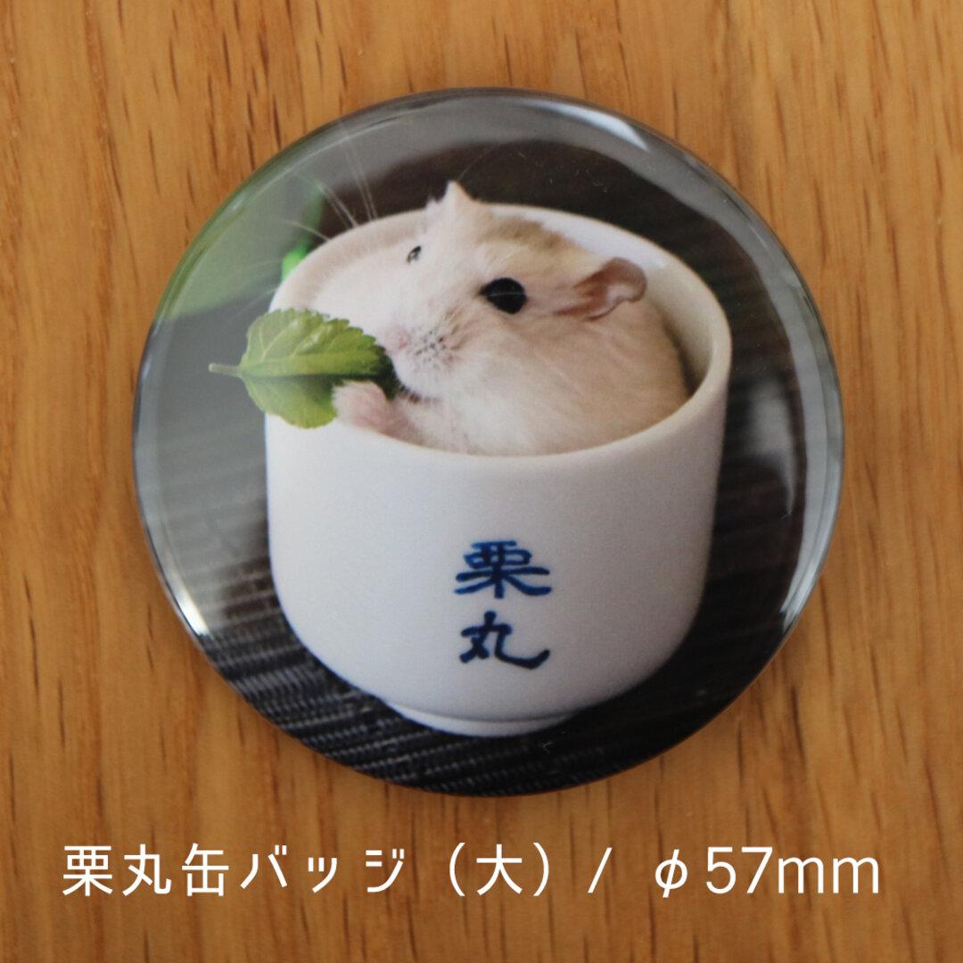栗丸缶バッジ(57mmタイプ)【おちょこ丸】