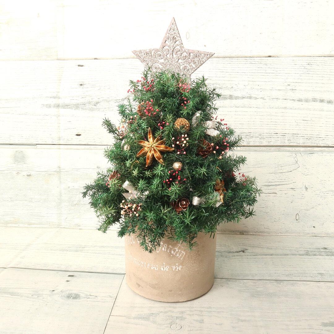 (好評につき再販)森のクリスマスツリー🎄(グリーンのヒムロスギのミニクリスマスツリー)銀の星・丸型