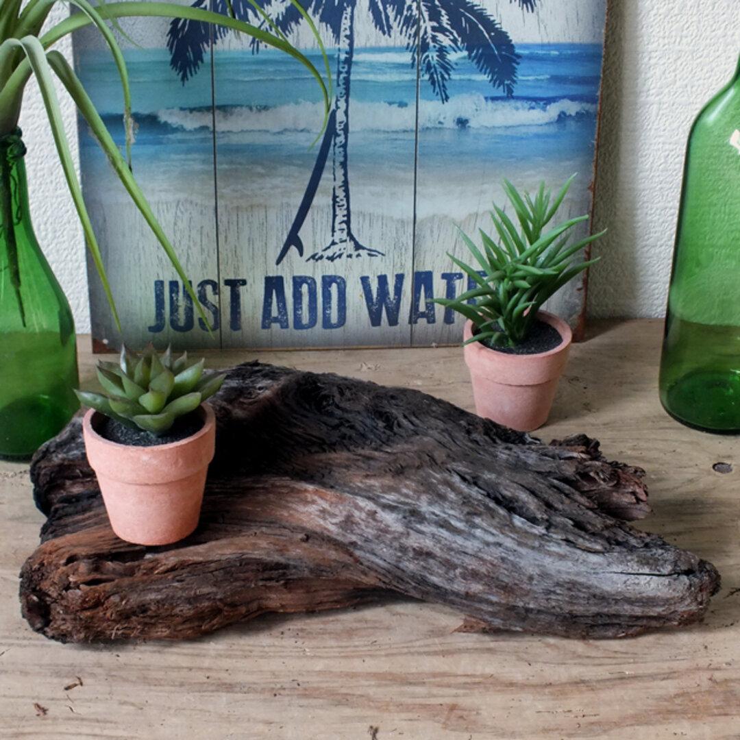 ドリフトウッド 海の木 ささくれた流木 オブジェ/ディスプレイ「N-9」