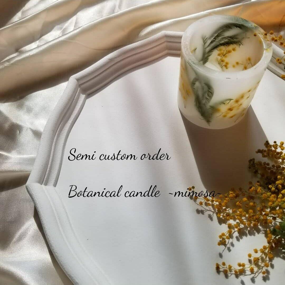 botanical candle  ~mimosa~