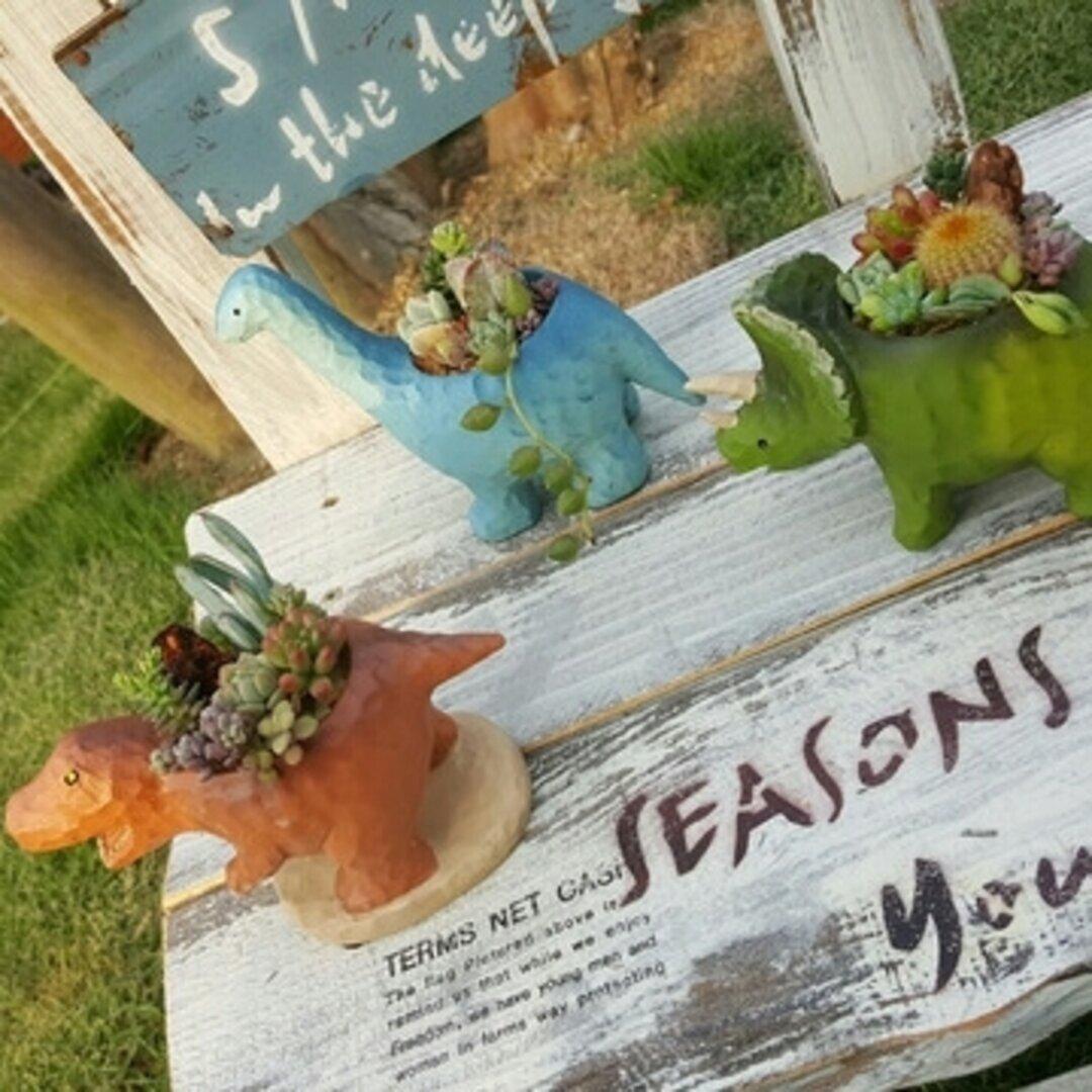 大人気!《3点セット》オシャカワな恐竜のサボテンor多肉植物の鉢植え