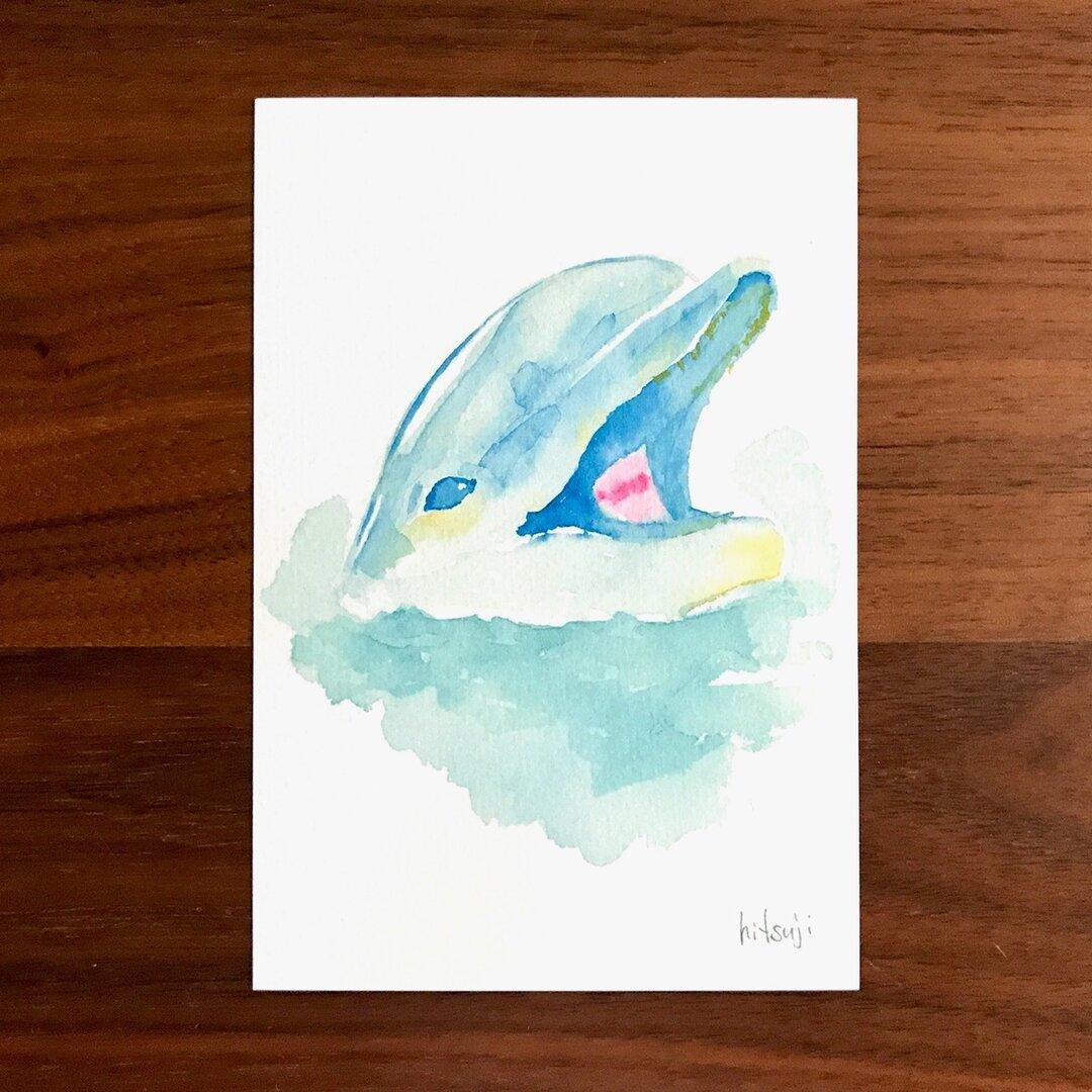 01 / イルカ / ポストカード 2枚セット