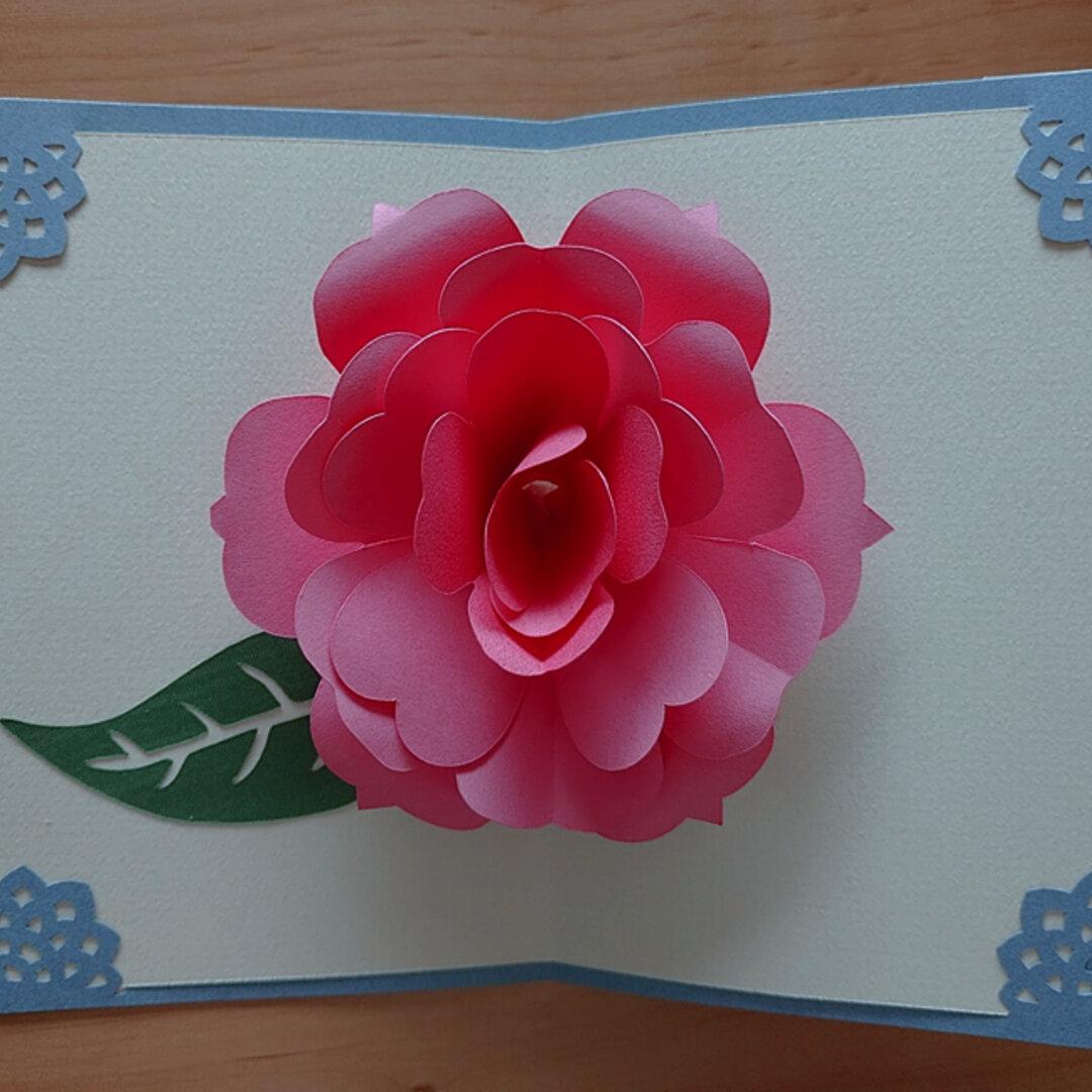 ポップアップ グリーティングカード(濃いピンクのバラ)