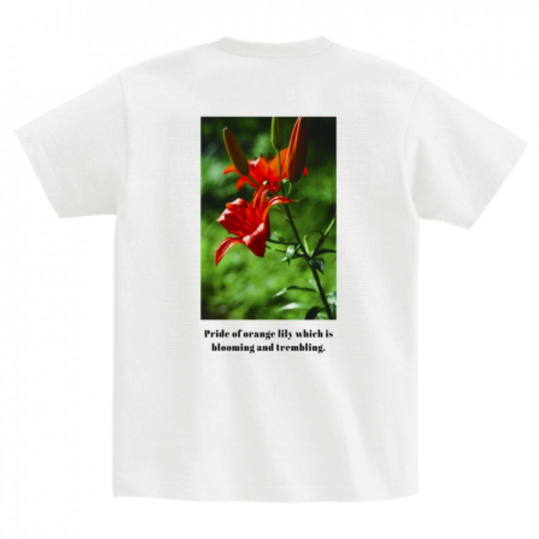 送料無料【OPTIMUS】レディースバックプリントTシャツ_002