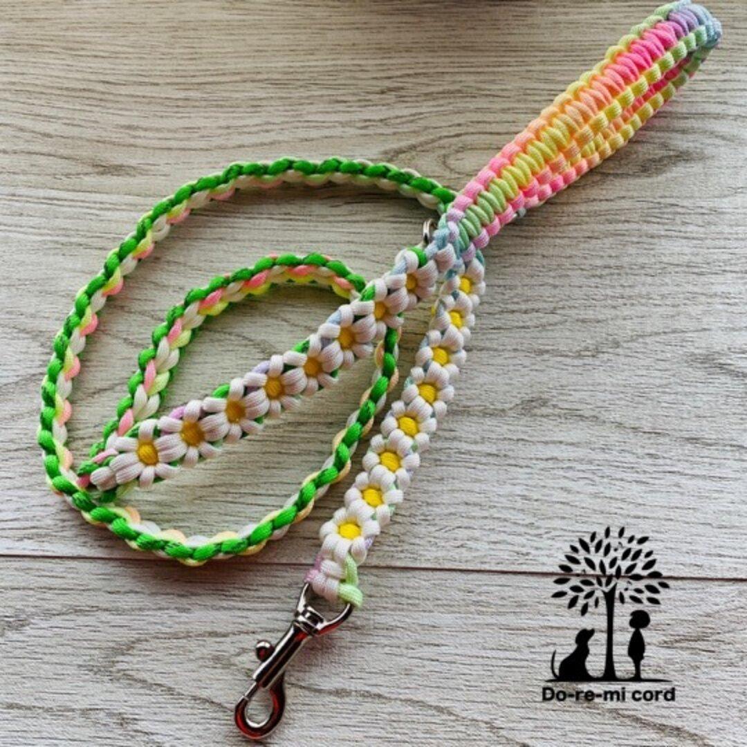 <送料無料>カフェリード37 虹のふもとに咲くカモミール