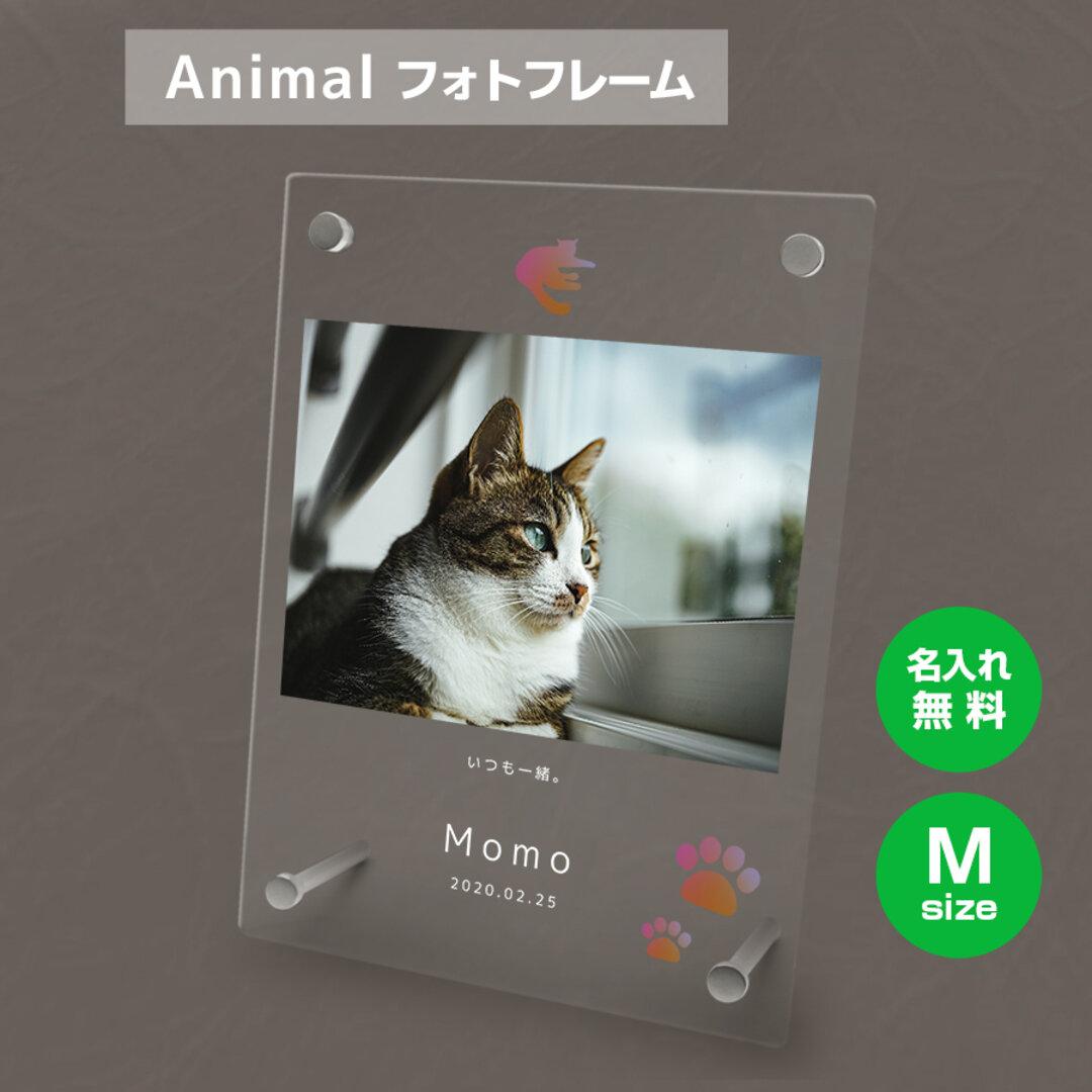 【名入れ無料】 フォトフレーム サイズM ペット ペットグッズ 写真立て フォトスタンド ペット用品 cat010m