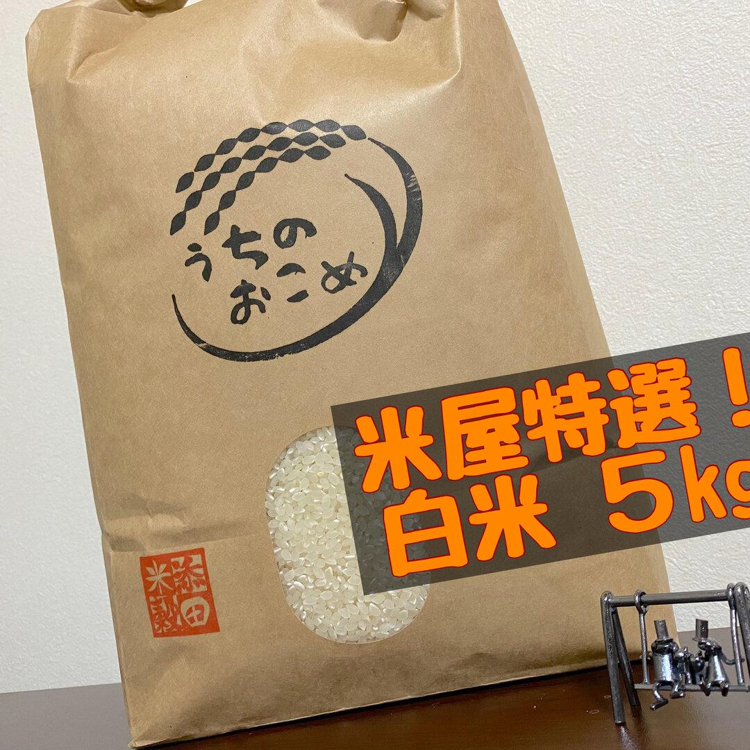 【新米】令和3年 栃木県産 特選ブレンド白米5kg【送料もお得に】