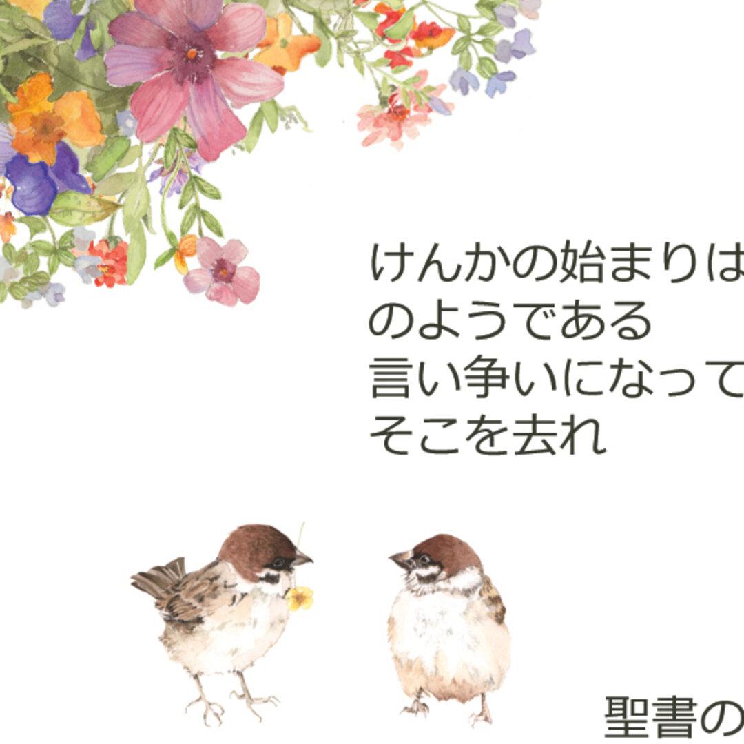 聖書と花の絵Mini聖句カード5種両面印刷100枚1セット