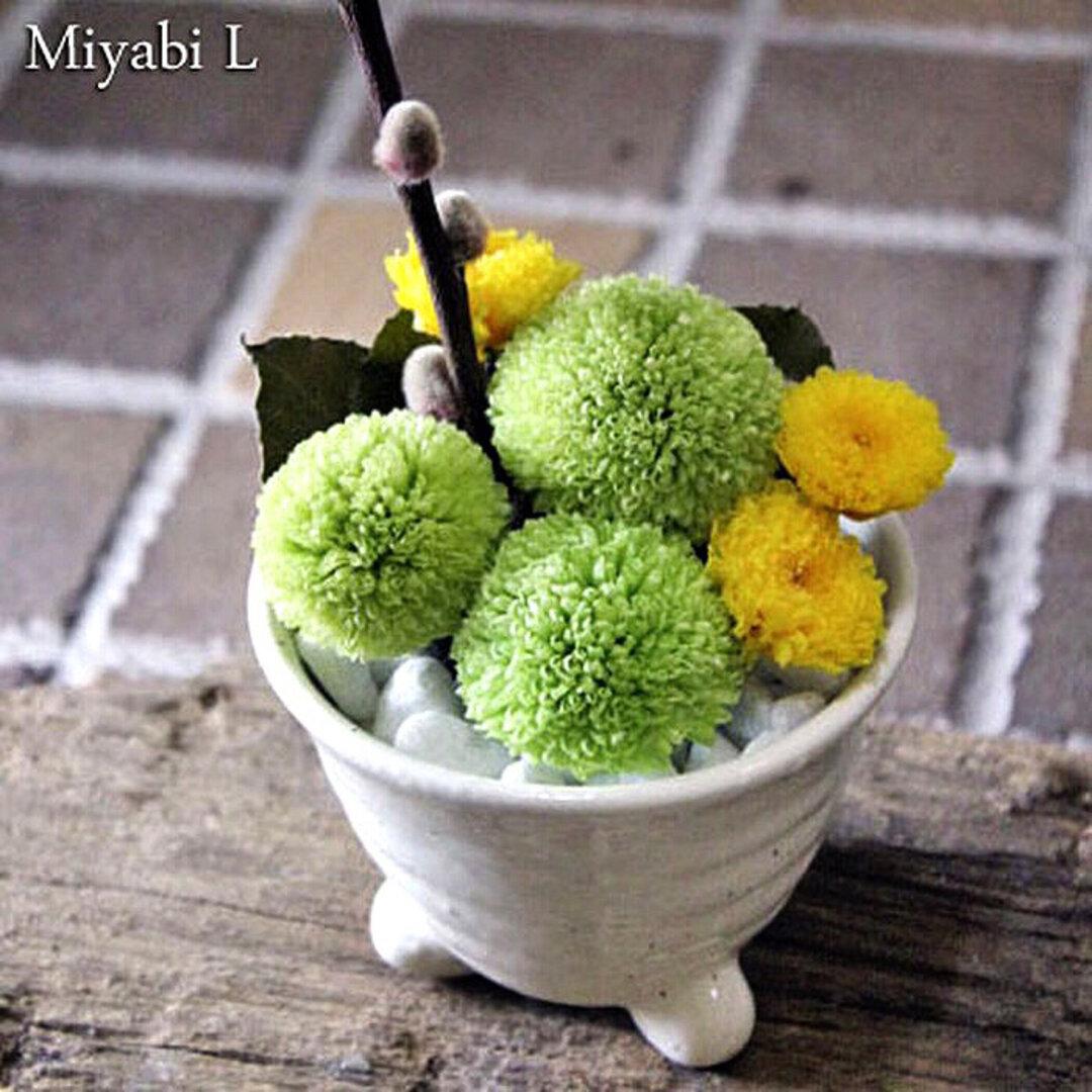 Miyabi L -green-