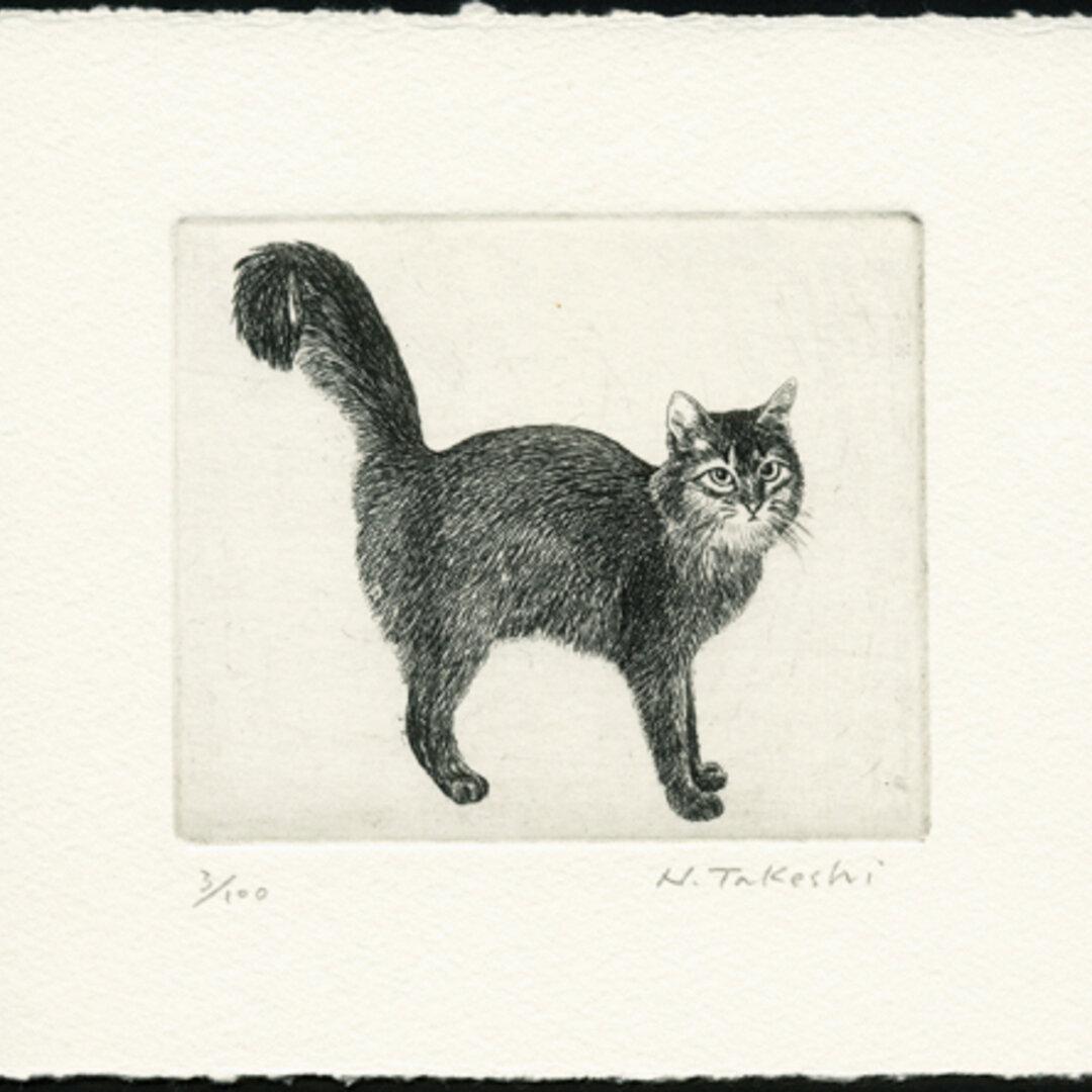 シッポの大きな猫 / 銅版画 (作品のみ)