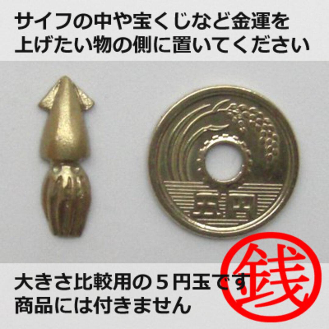 銭イカ (お守り)