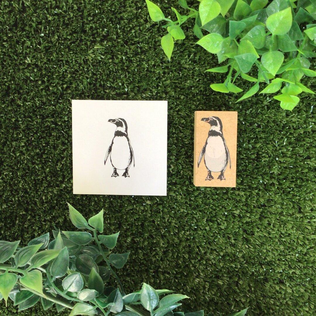 動物スタンプ(フンボルトペンギン)