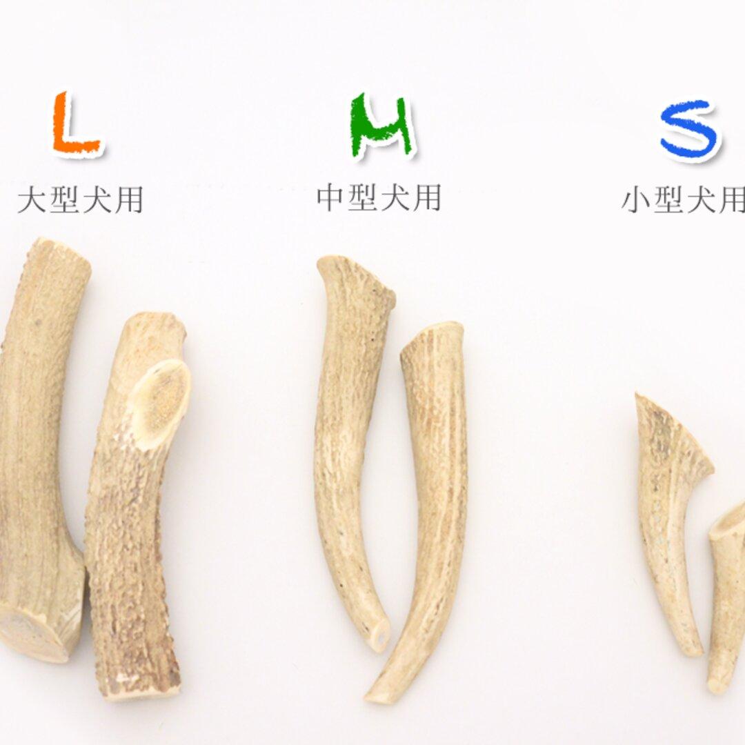 【産地直送】愛犬用☆天然北海道産 鹿ツノおもちゃ 1本 Lサイズ(大型犬~)