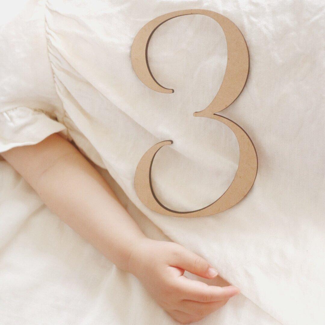 計10個セット 大きい数字 0〜9 レターバナー お誕生日 インテリア 月齢 ニューボーン マタニティ