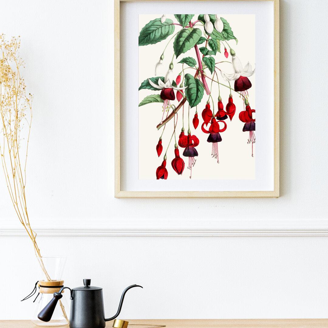 【NO.164】赤色のフクシアの花☆ボタニカルフラワーヴィンテージナチュラルインテリア花束ポスター個性的ユニーク