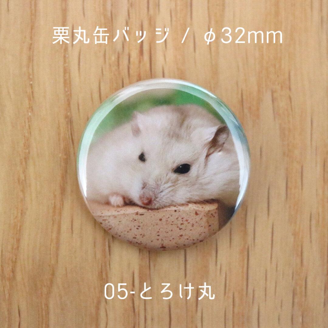 栗丸缶バッジ(32mmタイプ)【05-とろけ丸】