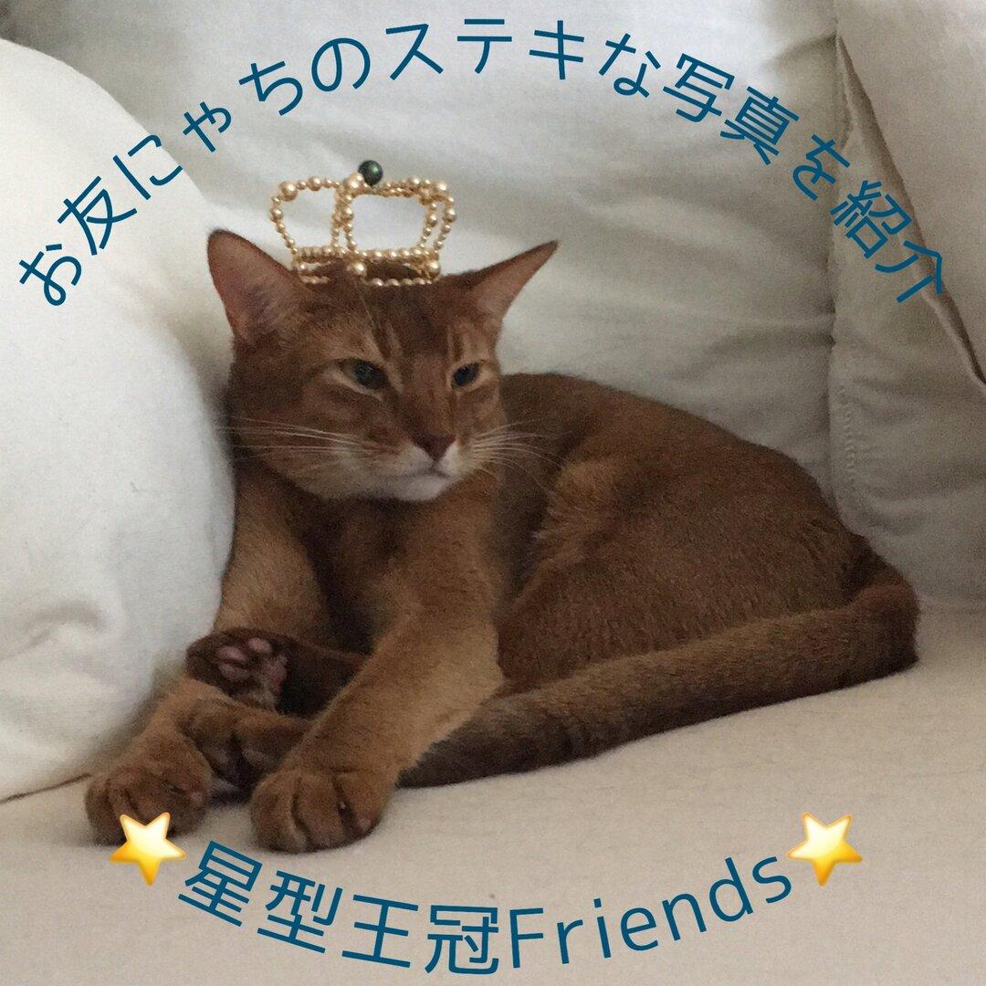 星型王冠 可愛いお客様着用画像