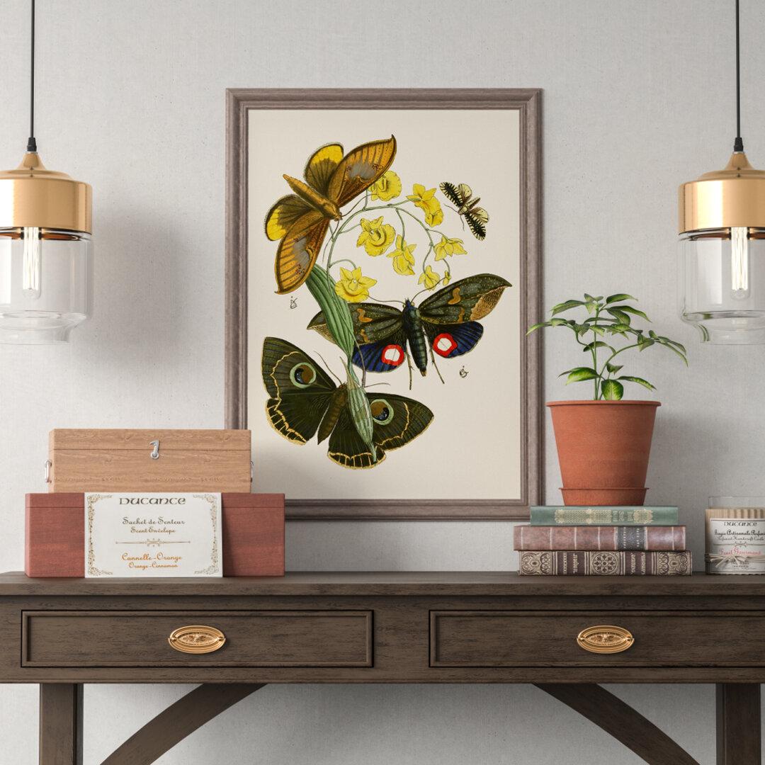 【NO.166】黄色い花と蛾のポスター☆虫花柄イラストボタニカルフラワーヴィンテージ花束ナチュラルインテリアA4A3