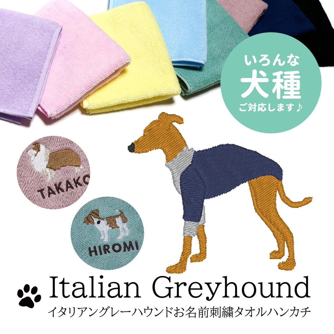 イタリアングレーハウンド刺繍今治タオルハンカチ