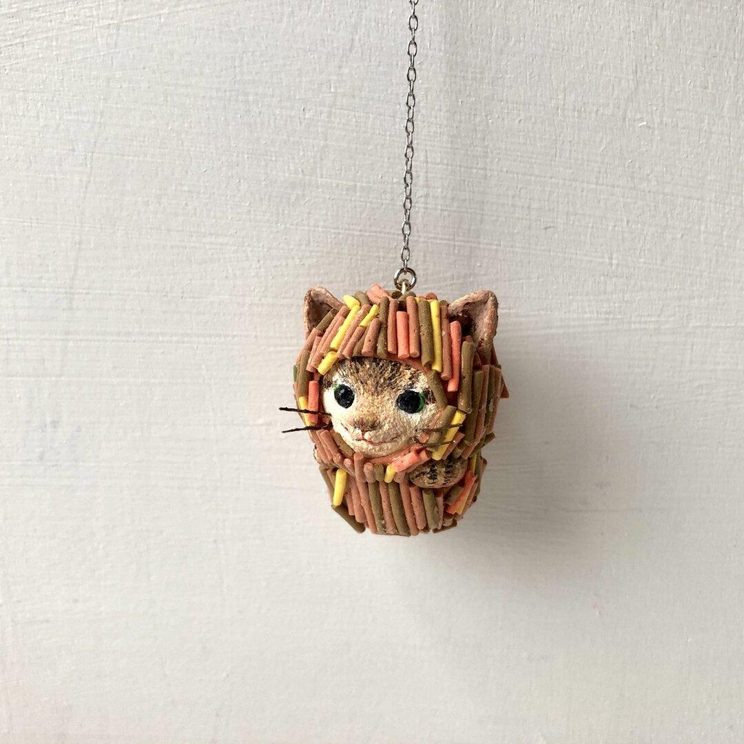 ミノ猫さん(キジトラ)