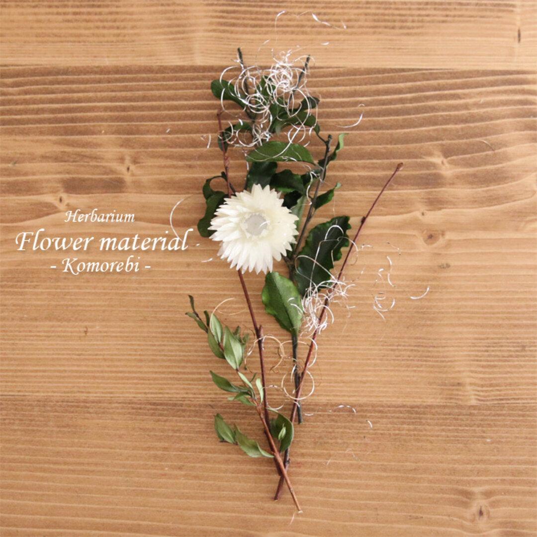 【ハーバリウムキット】 ハーバリウム 花材セット1本分 (木漏れ日)