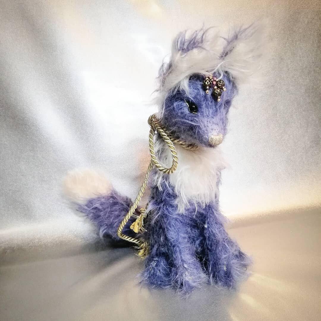 Teddyfox  おきつねさま(Auringon lasku,female)