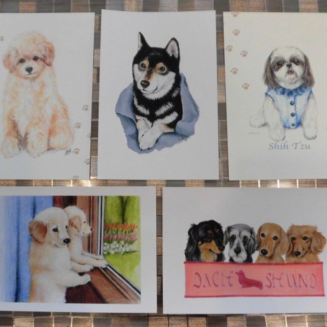 <犬のポストカードセットP>