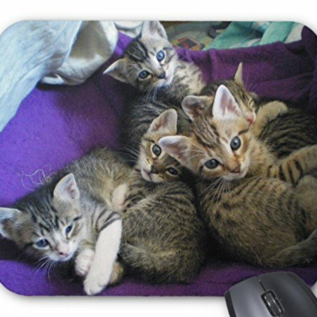 可愛い子猫たちのマウスパッド:フォトパッド(世界の猫シリーズ) (C)