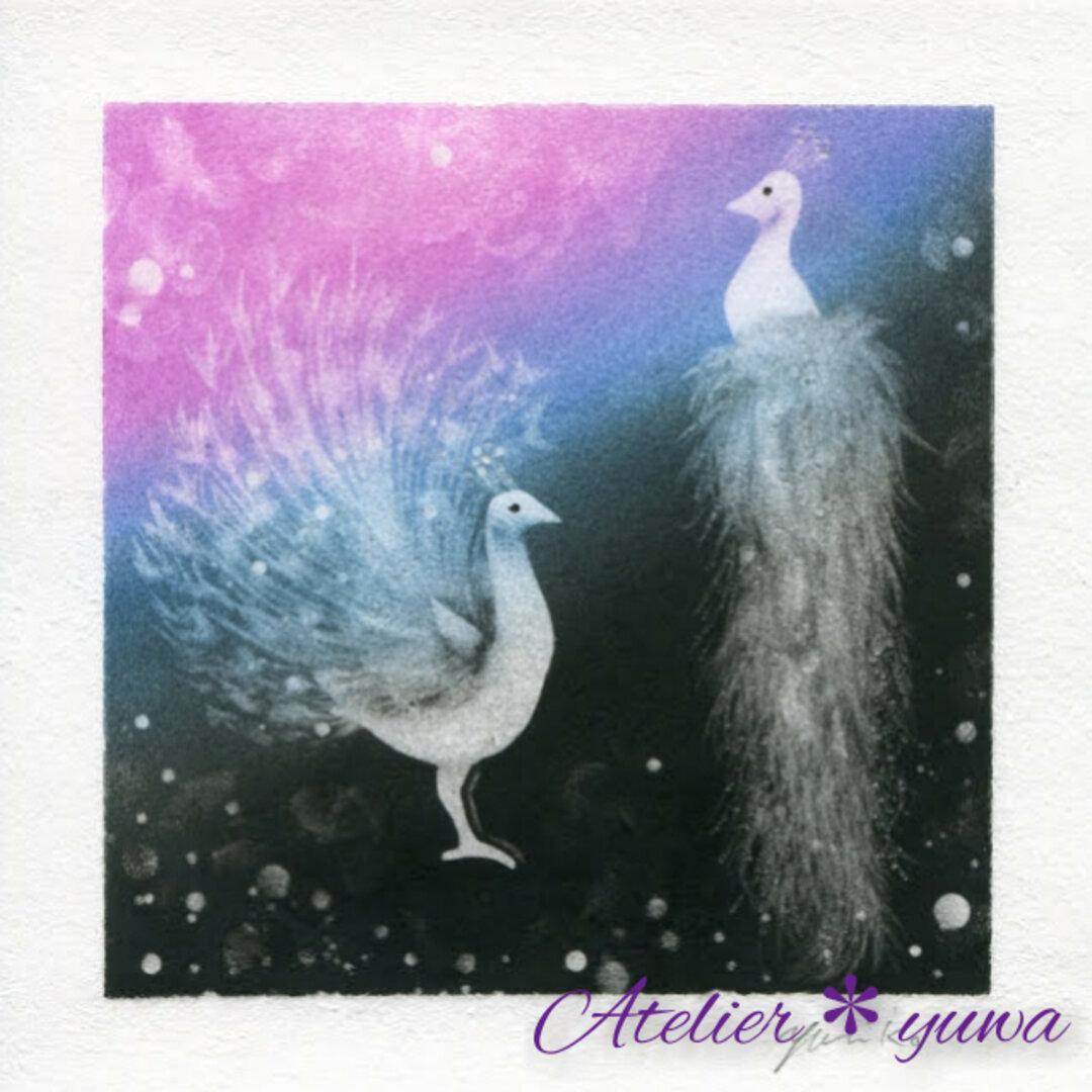 白孔雀の夢
