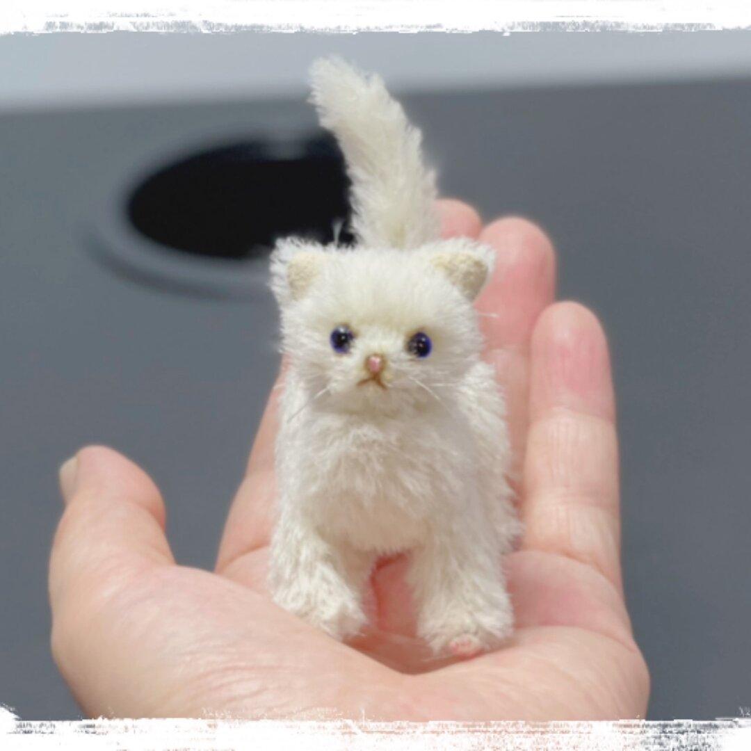白ネコ ぬいぐるみ ミニチュア テディベア ブライス ドール ペット