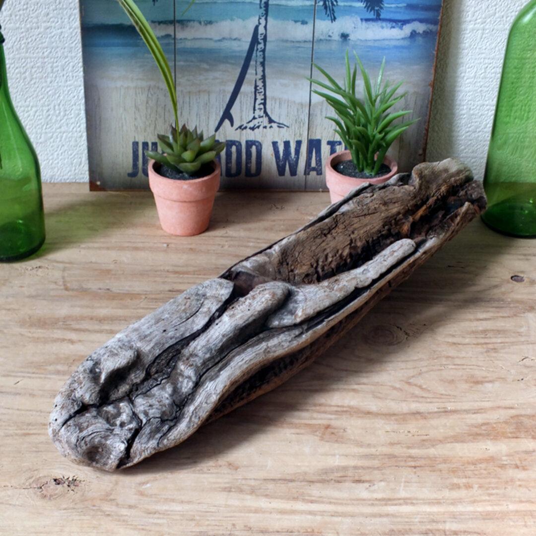 ドリフトウッド 海の木 流木 古代魚ぽく見えるオブジェ/ディスプレイ「N-11」