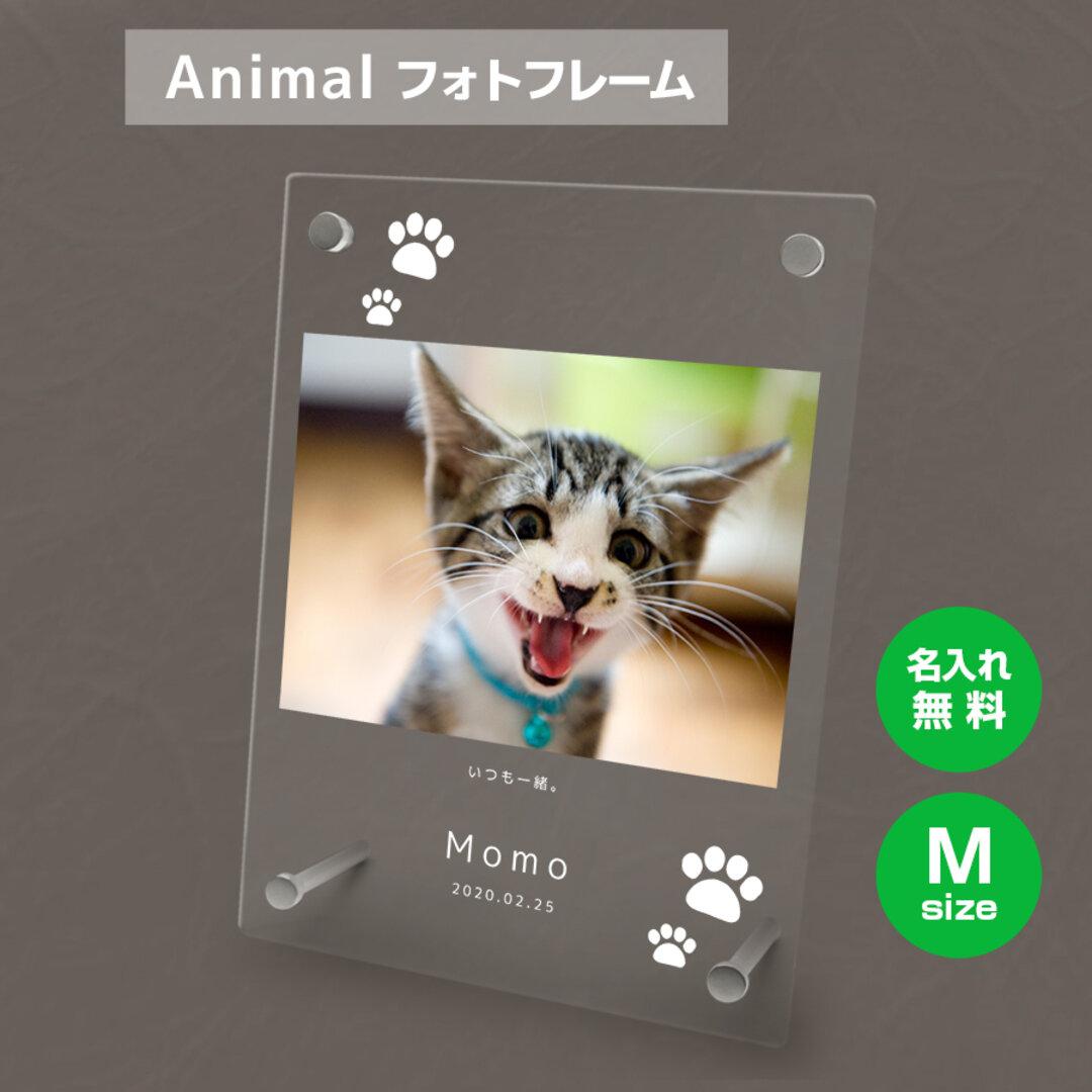 【名入れ無料】 フォトフレーム サイズM ペット ペットグッズ 写真立て フォトスタンド ペット用品 cat007m