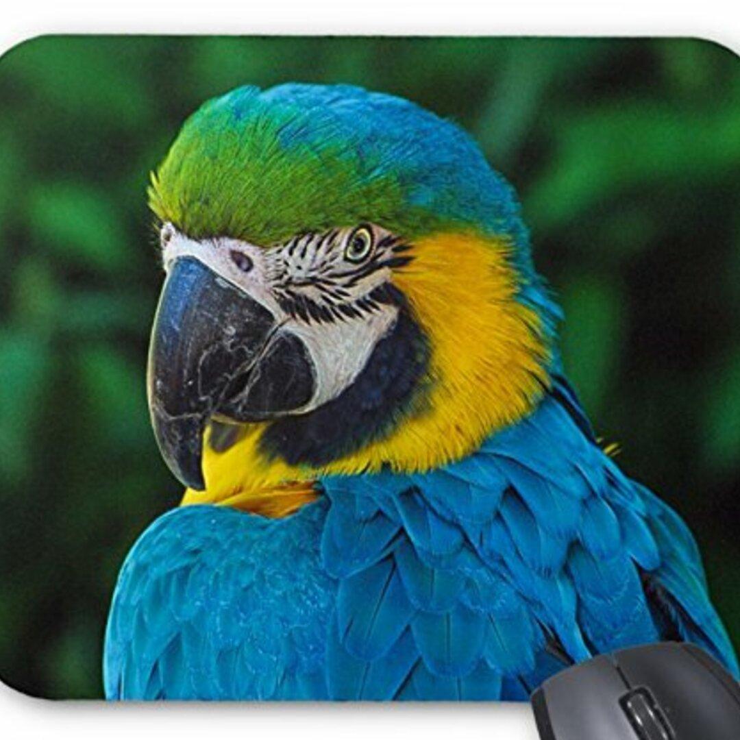 ルリコンゴウインコのマウスパッド 2:フォトパッド( 世界の野鳥シリーズ )