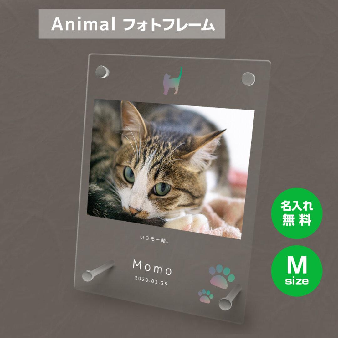 【名入れ無料】 フォトフレーム サイズM ペット ペットグッズ 写真立て フォトスタンド ペット用品 cat011m