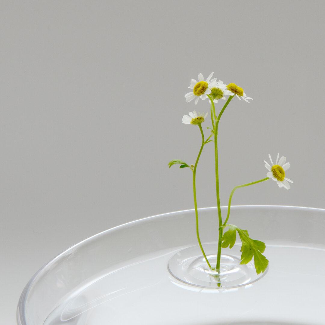 浮かべる一輪挿し Floating Vase / RIPPLE