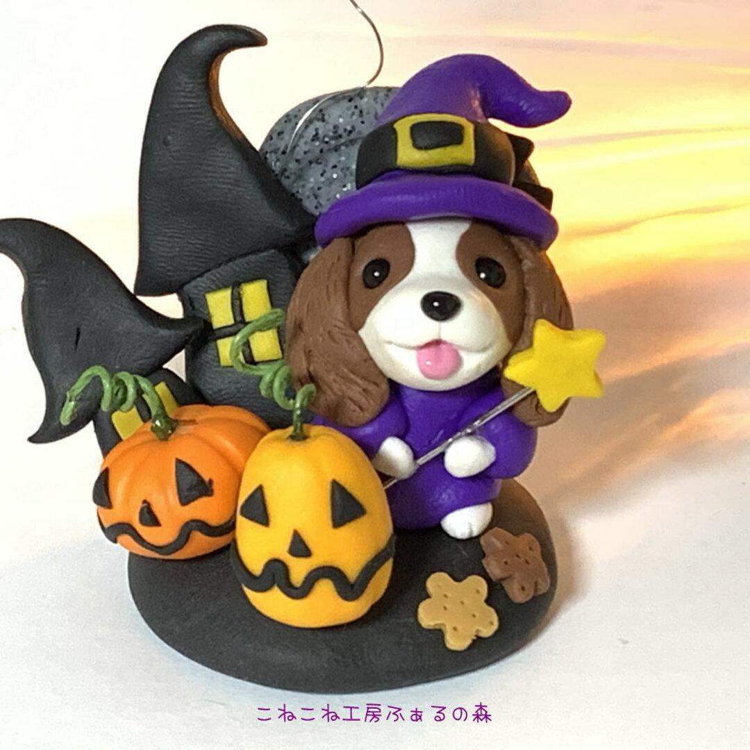 魔法使いのキャバリアちゃん(ブレンハイム)ハロウィン