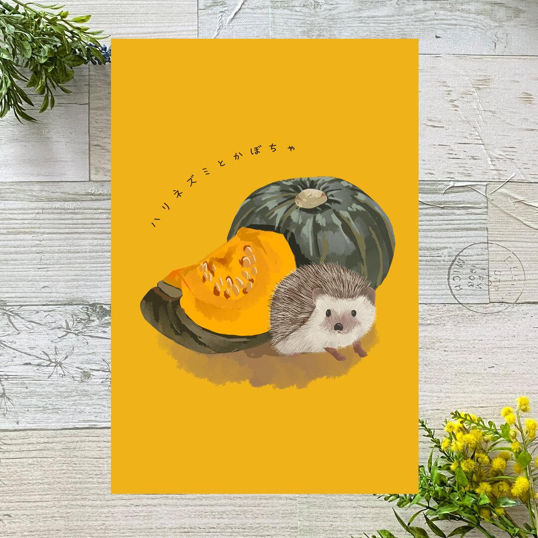 ハリネズミとかぼちゃ イラストポストカード2枚セット
