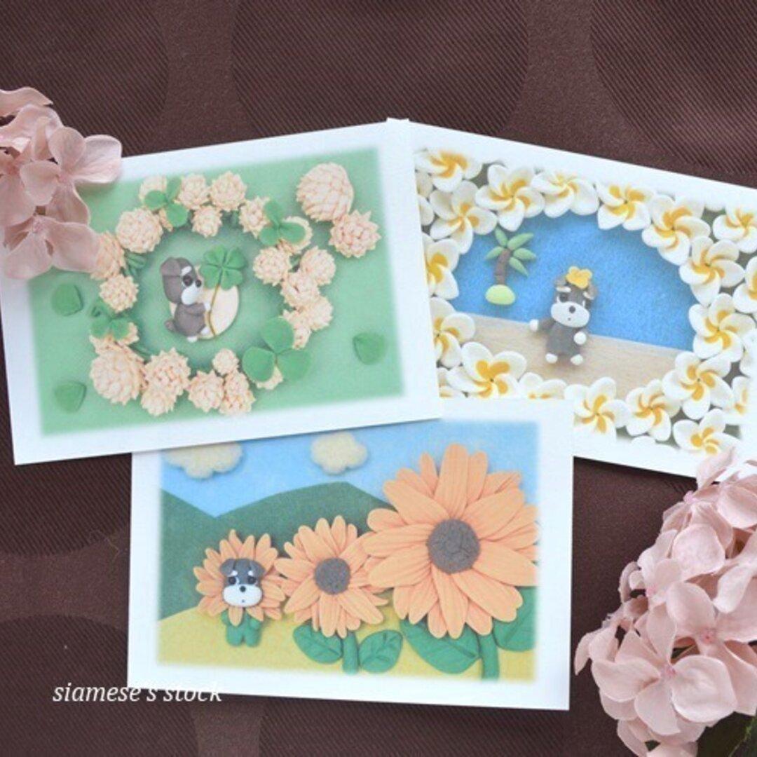 夏のお花とシュナウザー犬のポストカード3枚