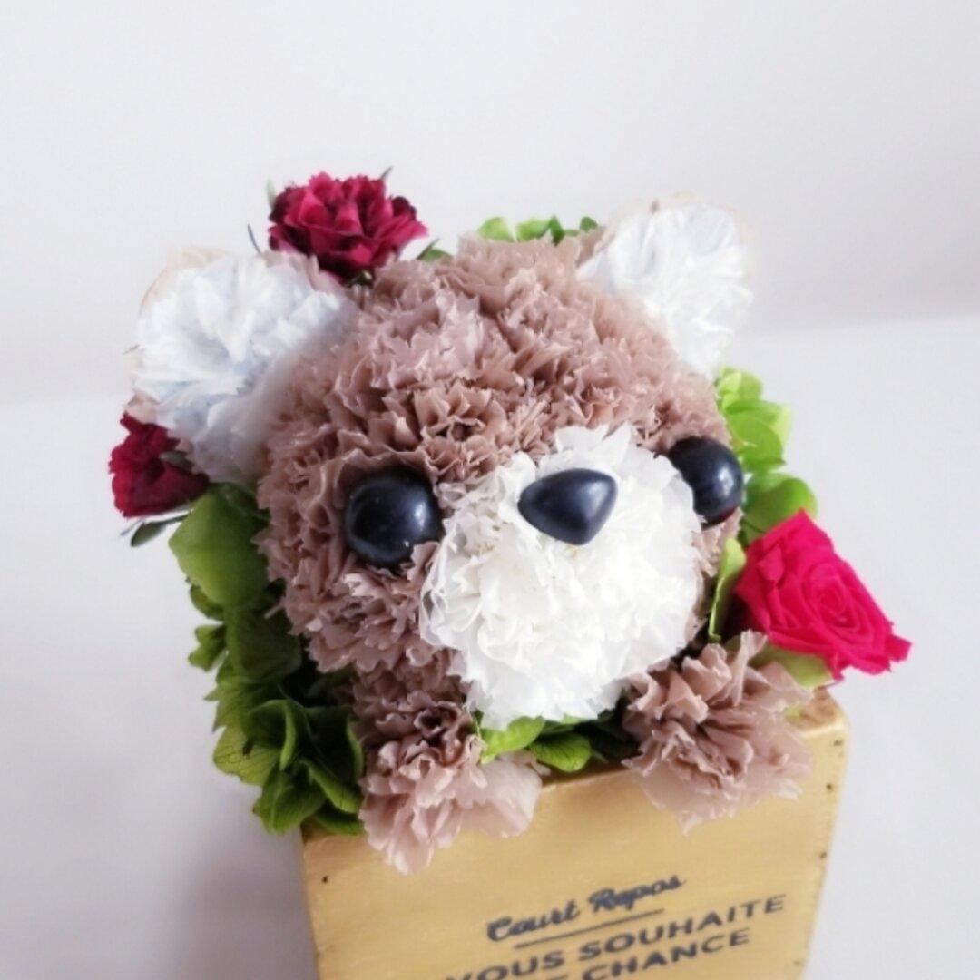 再販♡花っぷり フラワーペット【チワワ】プリザーブドフラワー   カーネーションの犬 花 ペット 動物   アニマル フラワーギフト 誕生日 プレゼント お供え   犬