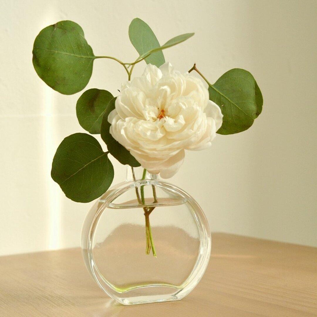 円形花瓶 一輪挿し ガラス ドライフラワー 花束 スワッグ 一輪挿し インテリア 飾り