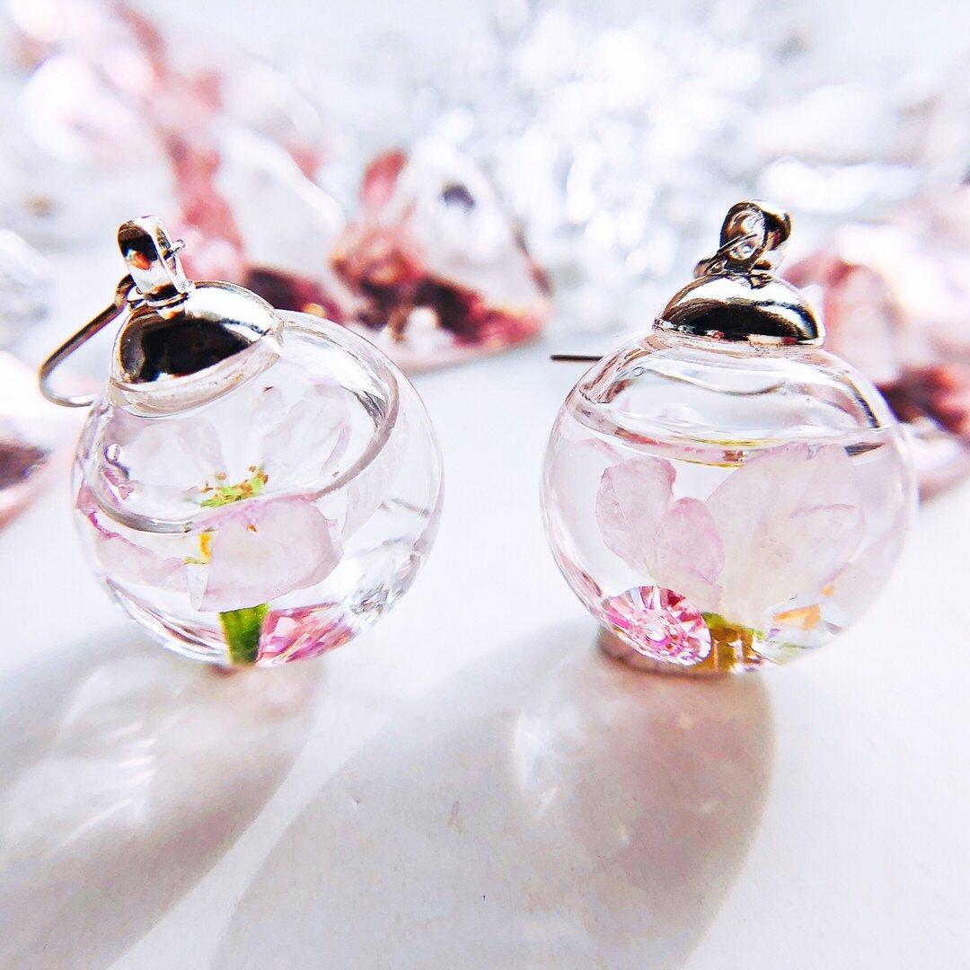 春を告げる桜のガラスドーム spring   ピアス/イヤリング    スワロフスキー